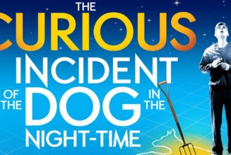 The Curious Incident of the Dog in the Night-Time – NT Broadcast September 7 @ 7:00 pm – 10:00 pm EDT