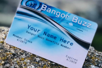 Announcing our new Bangor Buzz Benefit Cards