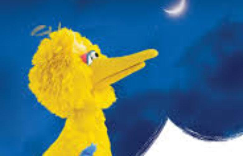 One World, One Sky: Big Bird's Adventure June 28